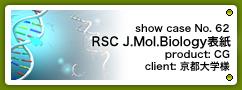 No. 62 RSC Molecular Biosystemsカバーピクチャー