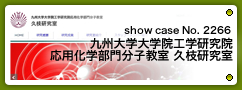 No.2266 九州大学大学院工学研究院 応用化学部門分子教室 久枝研究室