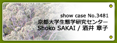 No.3481 京都大学生態学研究センター 酒井章子先生