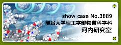 No.3889 龍谷大学理工学部物質科学科 河内研究室