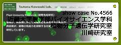 No.4566 近畿大学農学部バイオサイエンス学科 植物分子遺伝学研究室 川崎研究室