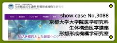 No.3088 京都大学大学院医学研究科 形態形成機構学研究室