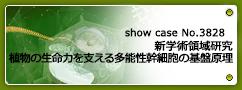 No.3828 平成29~33年度 文部科学省科学研究費助成事業 新学術領域研究「植物多能幹細胞」 植物の生命力を支える多能性幹細胞の基盤原理