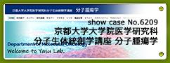 No.6209 京都大学大学院医学研究科分子生体統御学講座 分子腫瘍学